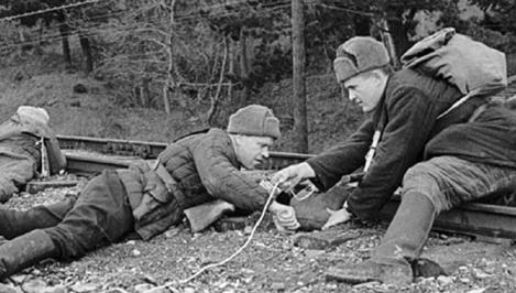 ВТвери пройдет молодежный исторический квест «Партизанскими тропами»