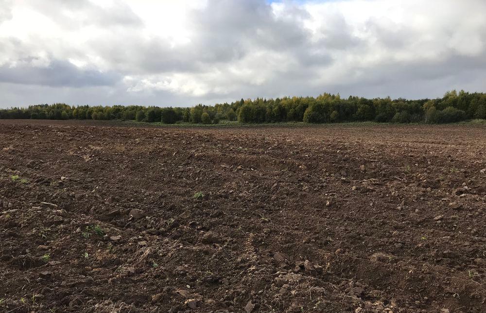 У землевладельцев отнимут землю, которой они не пользуются  - новости Афанасий