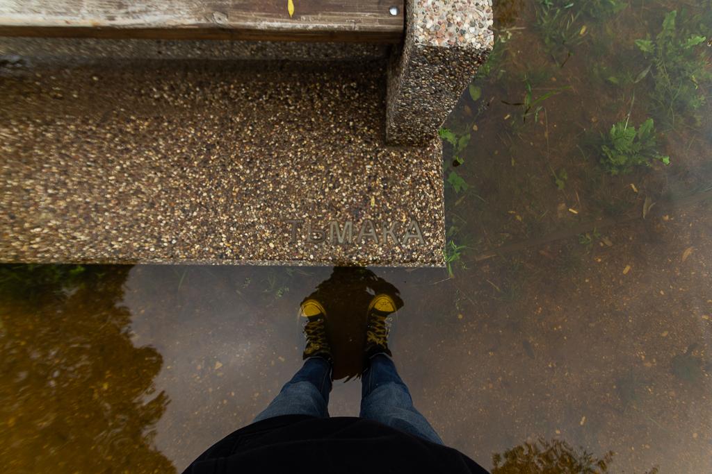 Ландшафтный парк «Тьмака» в центре Твери опять ушел под воду - новости Афанасий