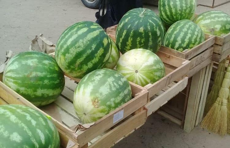 На одном из рынков в Тверской области обнаружены опасные арбузы, черешня и розы - новости Афанасий