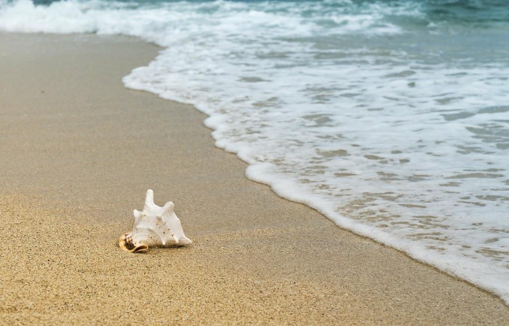 В этом году тверичи заменили пляжный отдых туризмом  - новости Афанасий