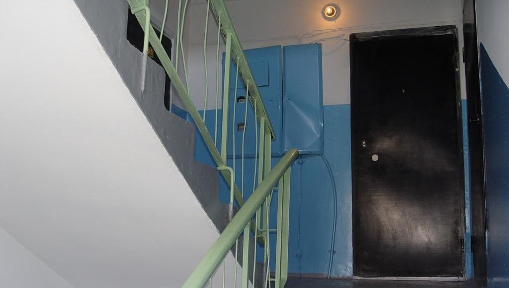 В Твери кот оказался заперт в квартире с трупами хозяев - новости Афанасий