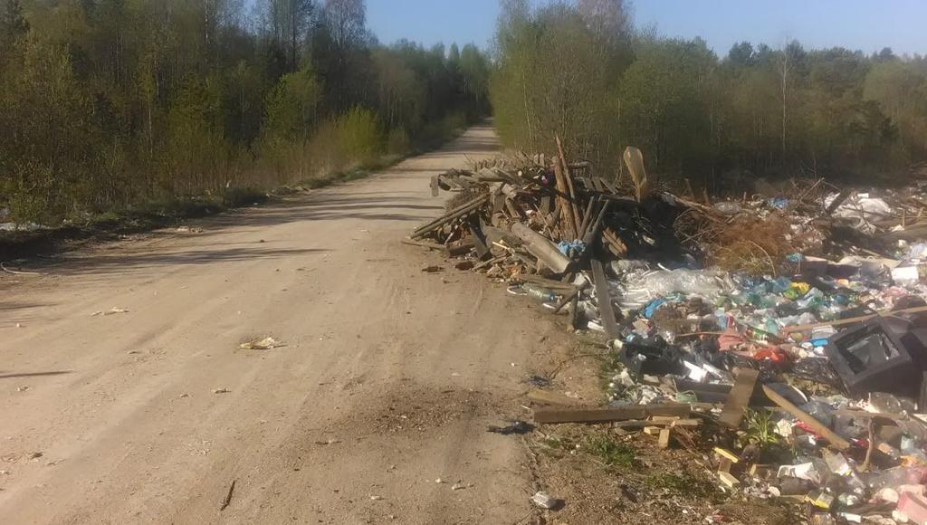 В Фировском районе Тверской области на дороге устроили свалку - новости Афанасий
