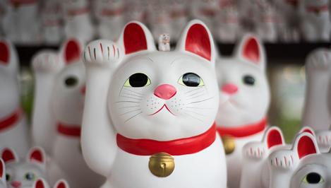 На фестивале «Андреевские дни» выступят японцы