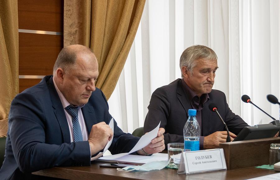 Комитеты Законодательного Собрания оценили исполнение областного бюджета за 2019 год - новости Афанасий