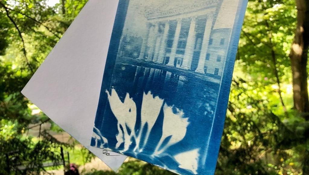 В Твери в ботаническом саду пройдут семейный квест и мастер-класс на свежем воздухе - новости Афанасий