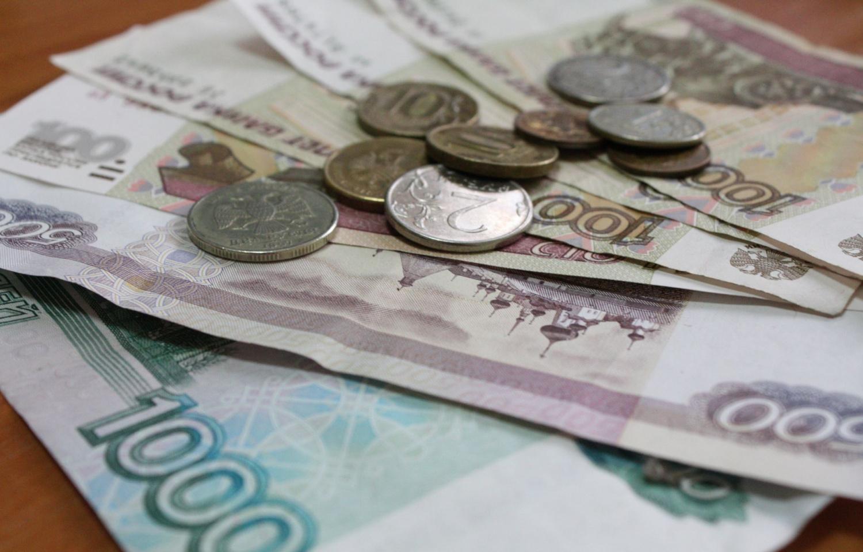 Правительство выделяет 35 млрд рублей на социальные выплаты: кто их получит - новости Афанасий