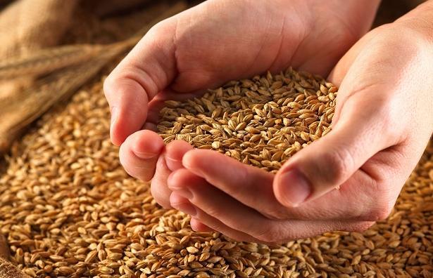 Россельхознадзор напомнил требования к маркировке крупяной продукции - новости Афанасий