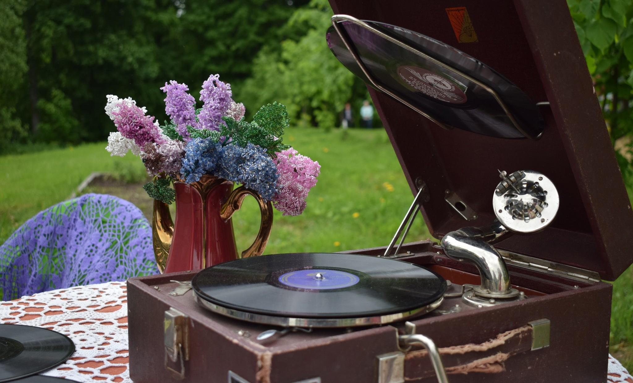 Под Тверью пройдет усадебный праздник «Сиреневое Домотканово»