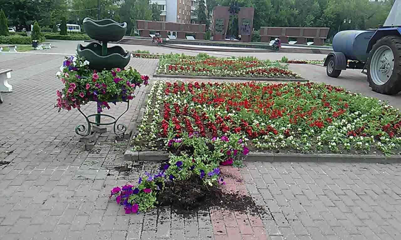 Неизвестные повалили цветочные конструкции возле Смоленского захоронения в Твери - новости Афанасий