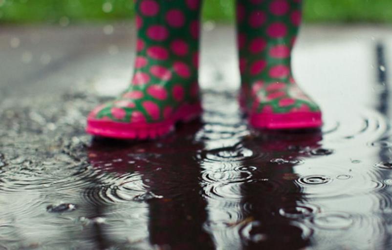 Дожди и грозы продолжатся в Тверской области