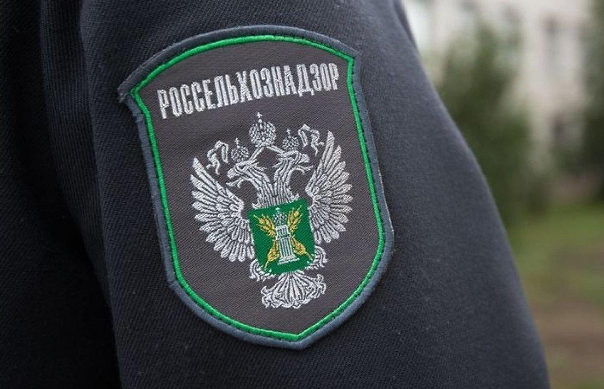 Лесопродукция Тверской области поставляется в 27 стран мира - новости Афанасий