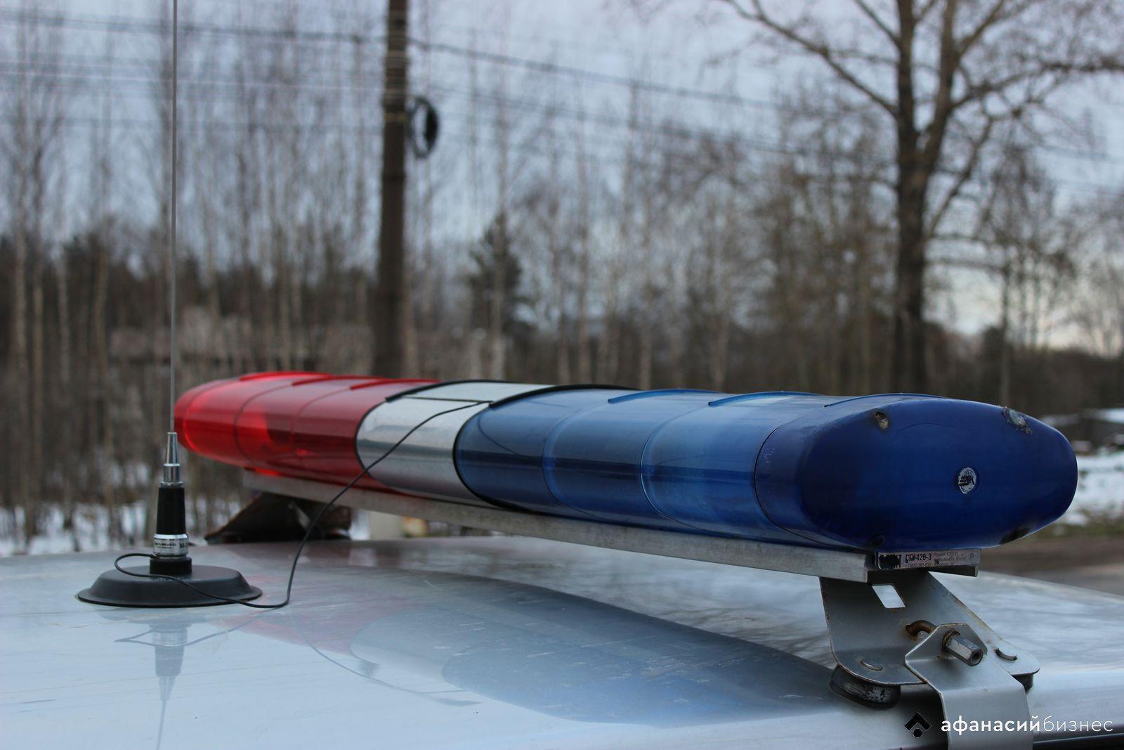 Женщина получила травмы в легковушке, столкнувшейся с лосем в Тверской области - новости Афанасий
