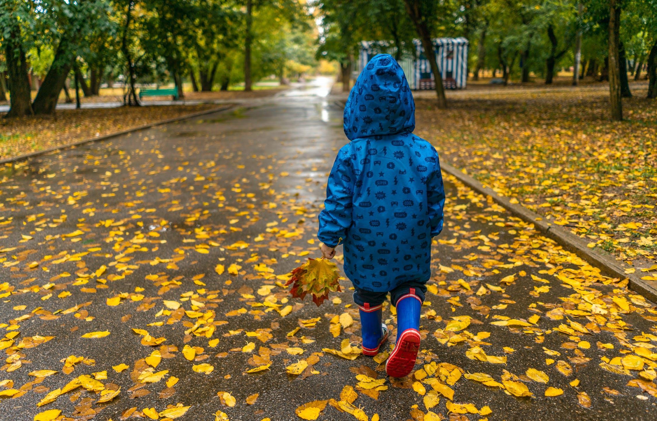 Теплая осень заканчивается: синоптики прогнозируют похолодание