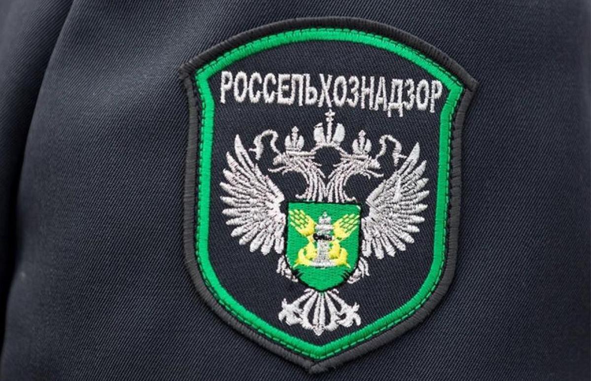 Импортные и экспортные грузы с продукцией растительного происхождения досмотрели в Тверской области - новости Афанасий