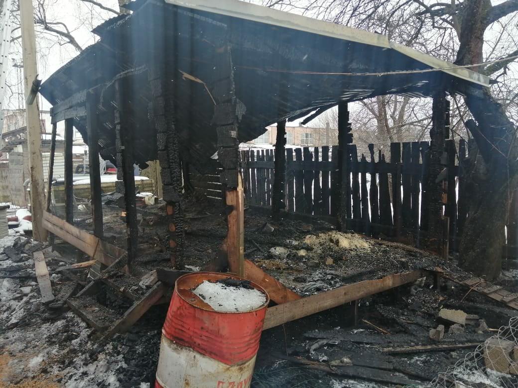 Два десятка кур погибли в огне при пожаре в Тверской области - новости Афанасий
