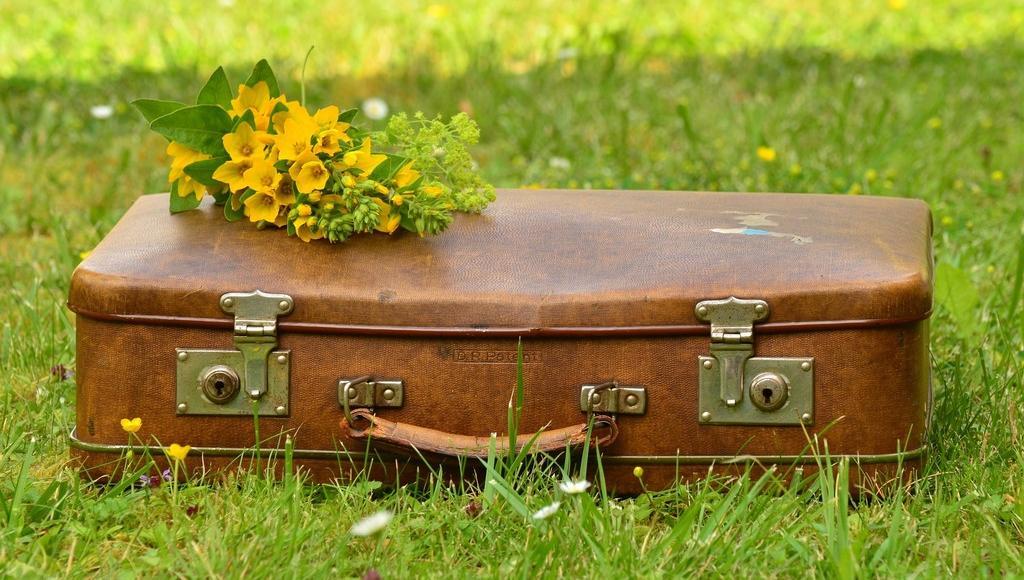 От чемодана до клатча: в тверском музее расскажут об истории сумок - новости Афанасий