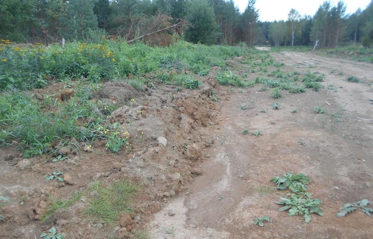 В Калининском районе выявлены нарушения земельного законодательства на 22 земельных участках - новости Афанасий
