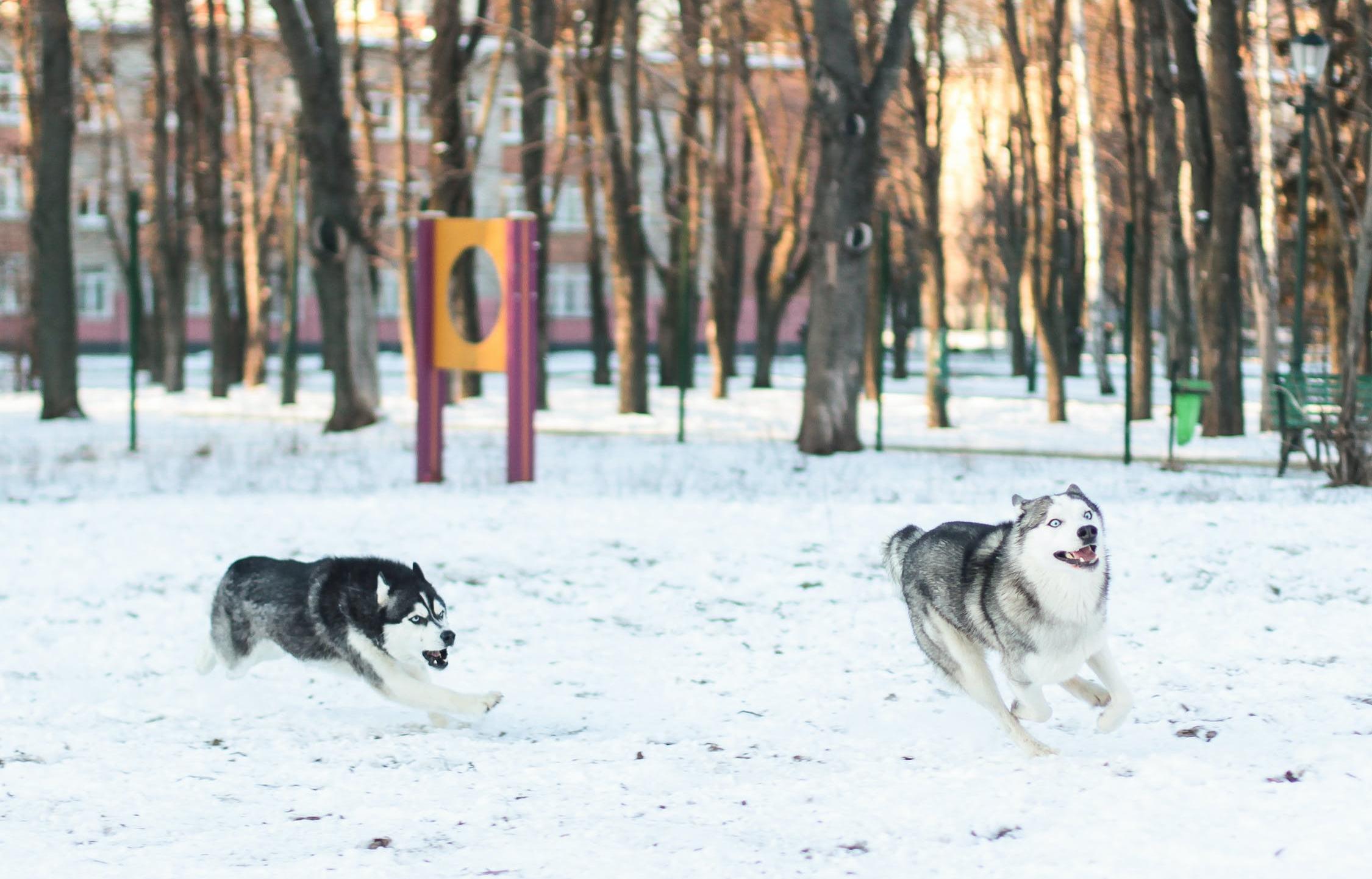 В Тверской области похолодает до -25 градусов
