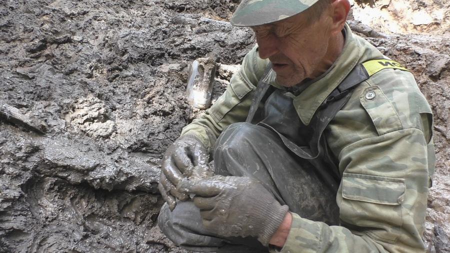 В Спировском районе поисковики подняли фрагменты фюзеляжа фронтового бомбардировщика ДБ-3 - новости Афанасий