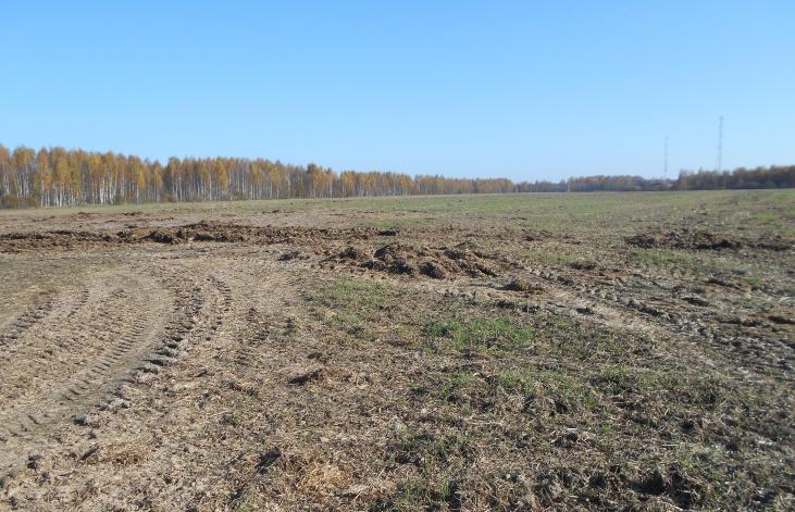 Землевладелец из Краснохолмского муниципального округа привлечен к административной ответственности за зарастание земель - новости Афанасий