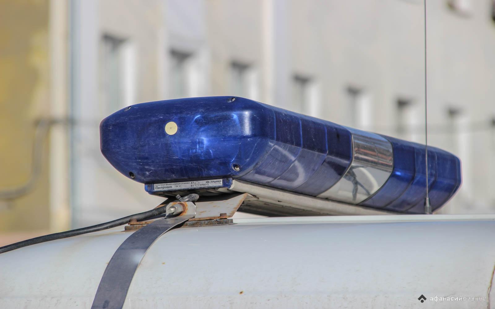 В Тверской области задержали одного из членов банды, ограбившей на трассе водителя - новости Афанасий