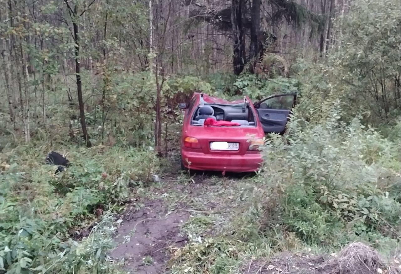 В Тверской области женщина пострадала в столкнувшейся с лосем легковушке