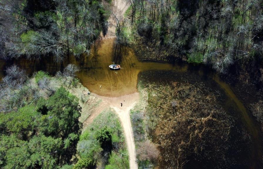 Прокуратура проверяет застройку и вырубку леса на Селигере  - новости Афанасий