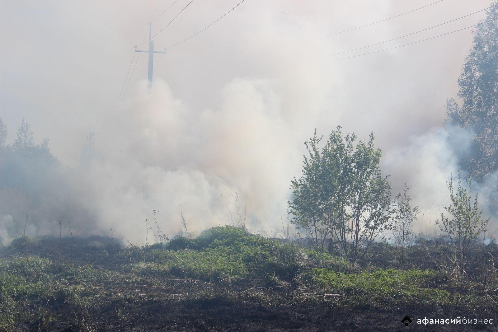Отделения нескольких пожарных частей борются с огнем на поле в деревне Тверской области - новости Афанасий