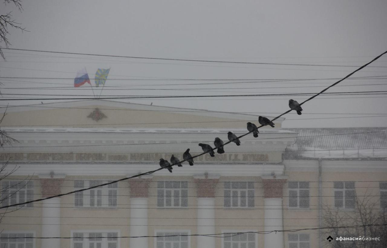Снегопады возвращаются в Тверскую область