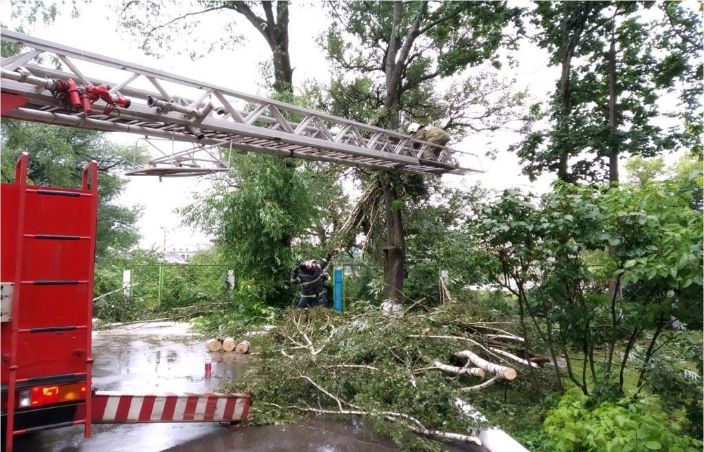 В Твери, Конаково и Кимрах спасатели убирали поломанные штормом деревья