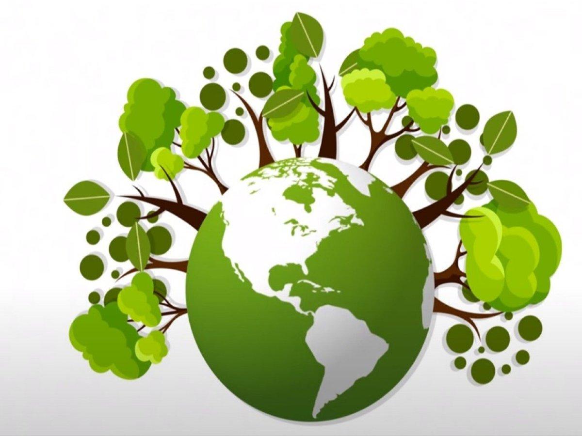 В Твери в ДК Пролетарка  пройдет экологический фестиваль - новости Афанасий