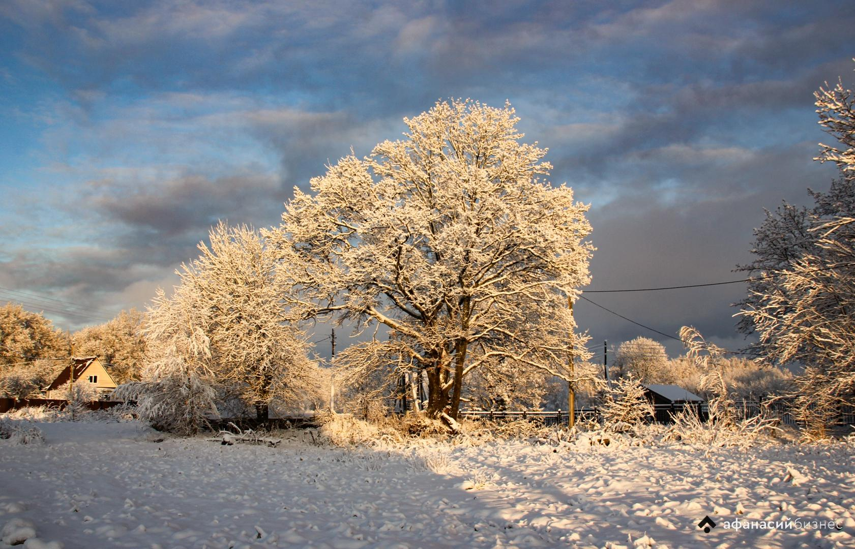 МЧС предупреждает о резком похолодании в Тверской области
