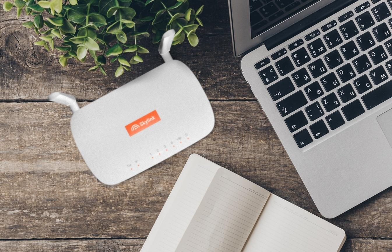 Клиенты Skylink могут подключить новый безлимит на даче