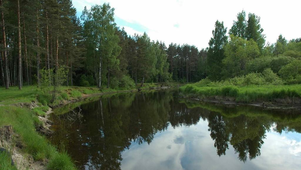 По решению суда в Тверской области снесут самовольную постройку и забор на берегу озера - новости Афанасий