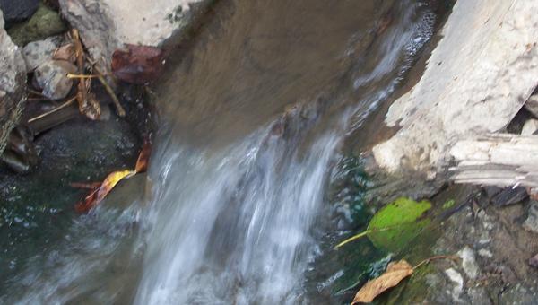 Тверская область - в аутсайдерах экологического рейтинга