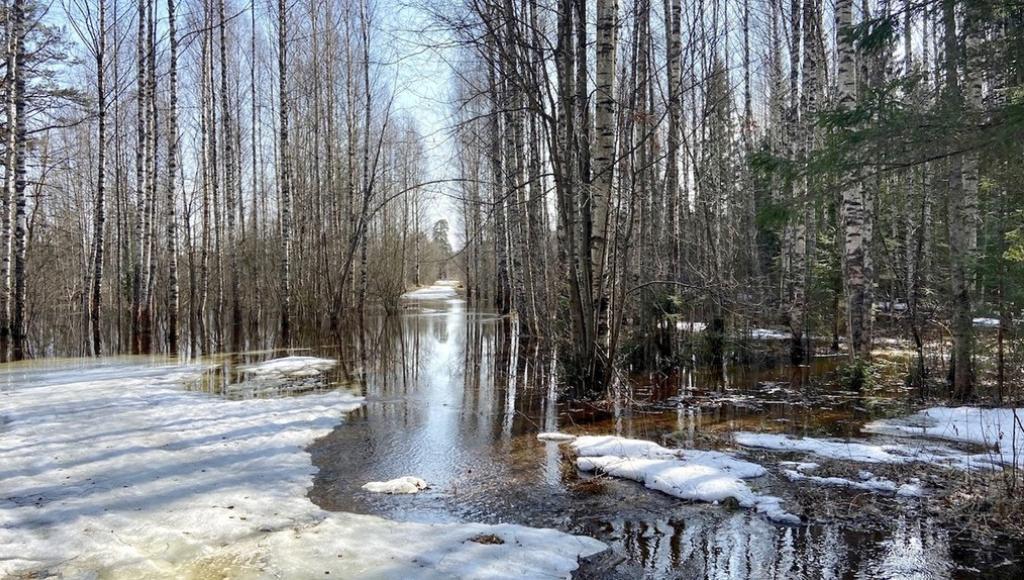 В Тверской области из-за паводка объявлен «оранжевый» уровень погодной опасности