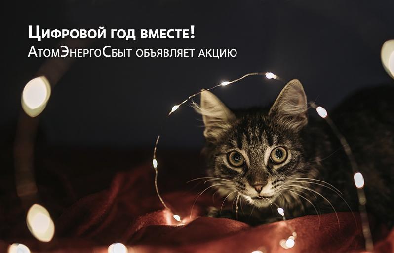 В Новый год с цифровыми сервисами АтомЭнергоСбыт - новости Афанасий