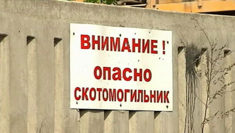 Природоохранная прокуратура нашла опасные скотомогильники в семи районах Тверской области