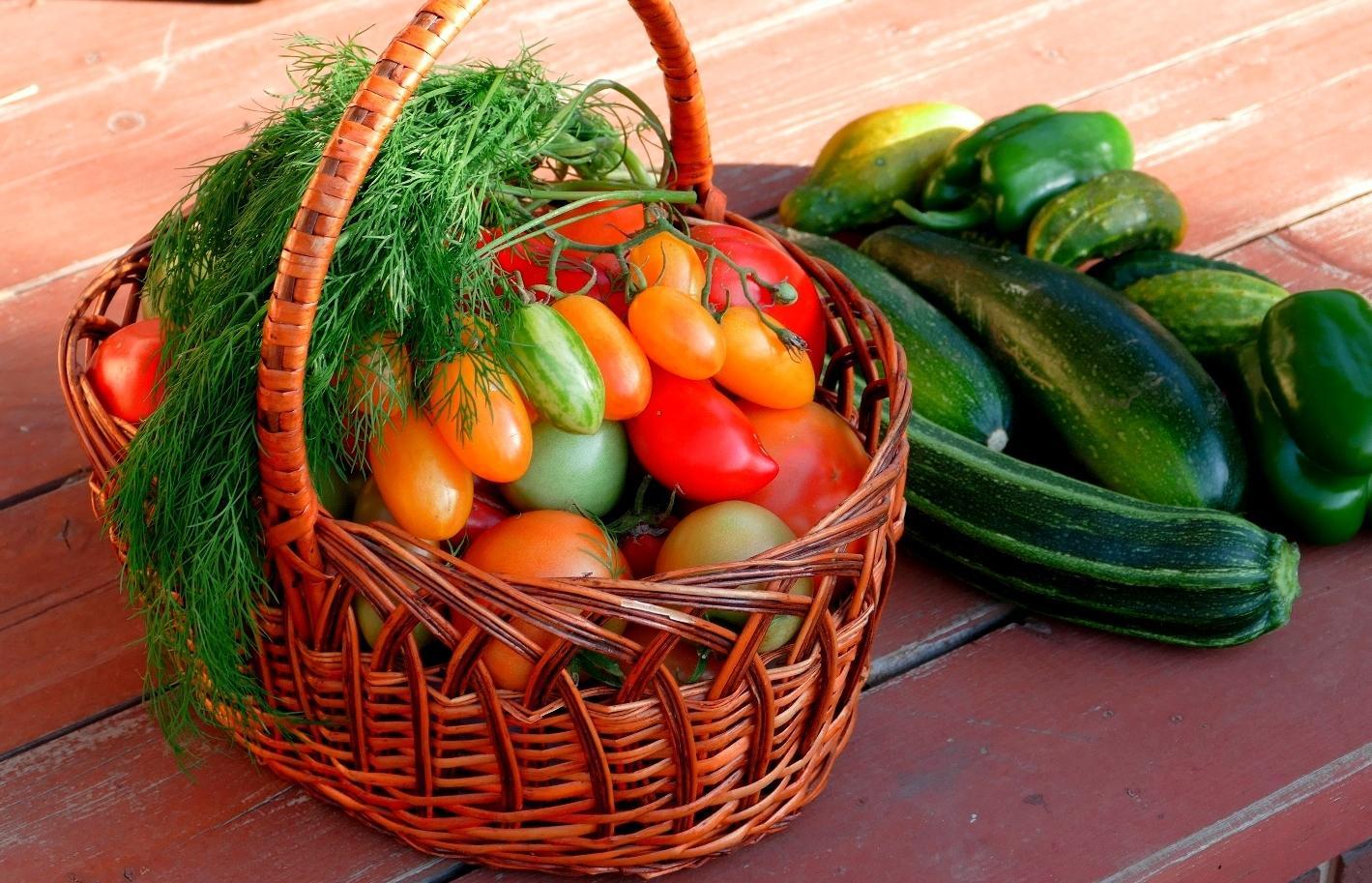 Россельхознадзор рассказал, как увеличить урожай - новости Афанасий