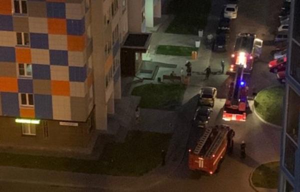 В Твери произошел пожар в ЖК Волга Лайф - новости Афанасий