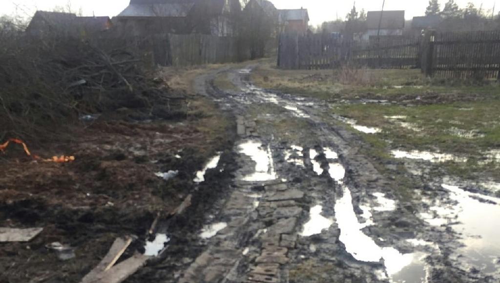 Дорогу в поселке под Тверью, на которой «скорая» застряла в грязи, пообещали привести в порядок - новости Афанасий