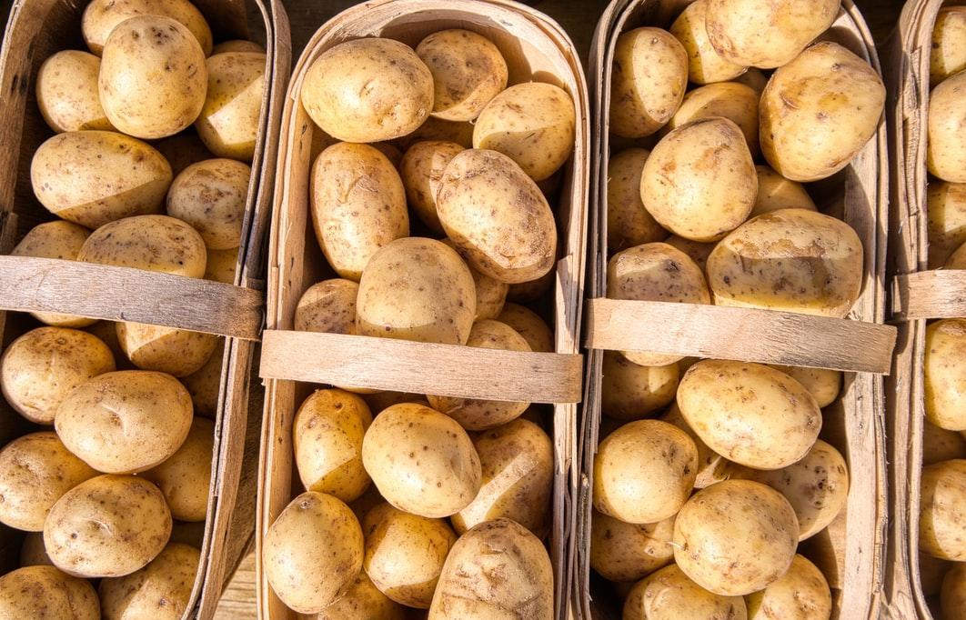 Хранение картофеля: главные правила ухода за урожаем с личного огорода - новости Афанасий