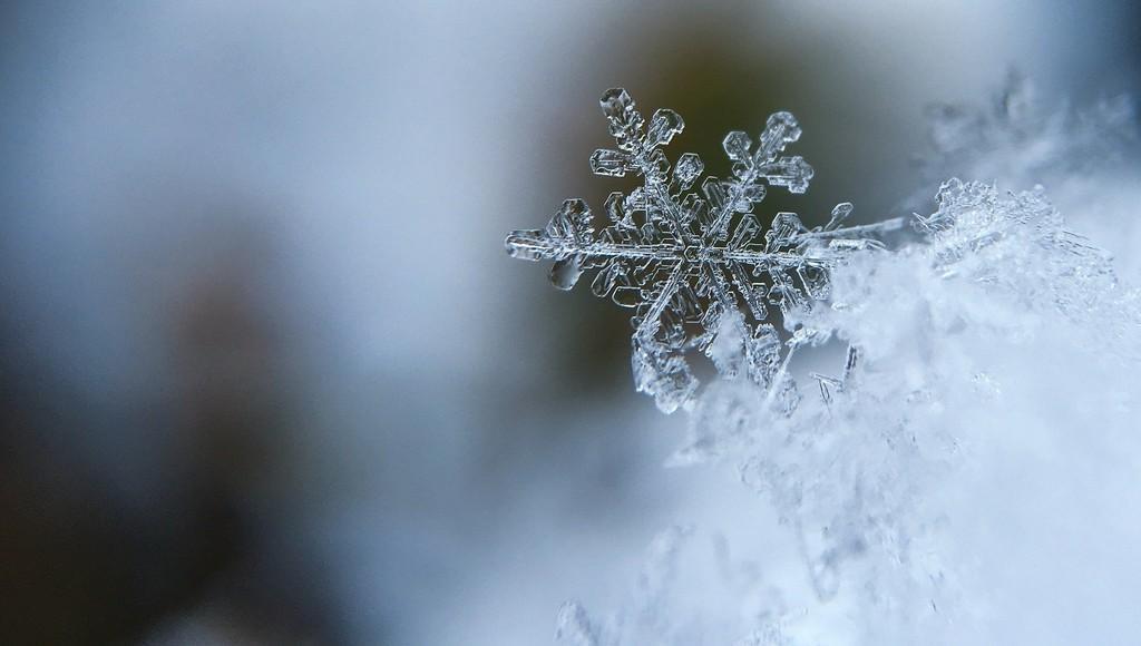 В Тверской области ожидается сильный снег и морозы до -30 градусов