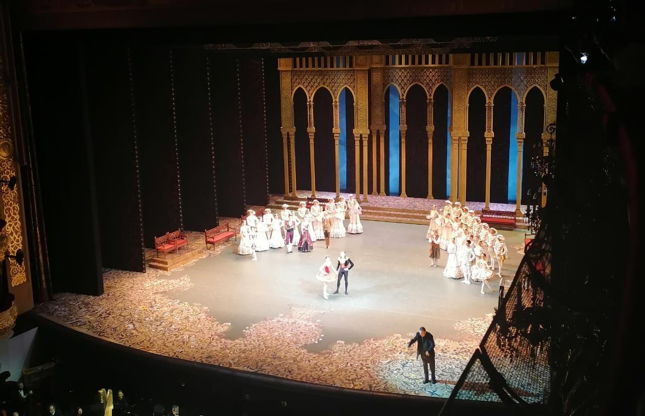 Тверских медиков отправили смотреть балет в Большом театре  - новости Афанасий