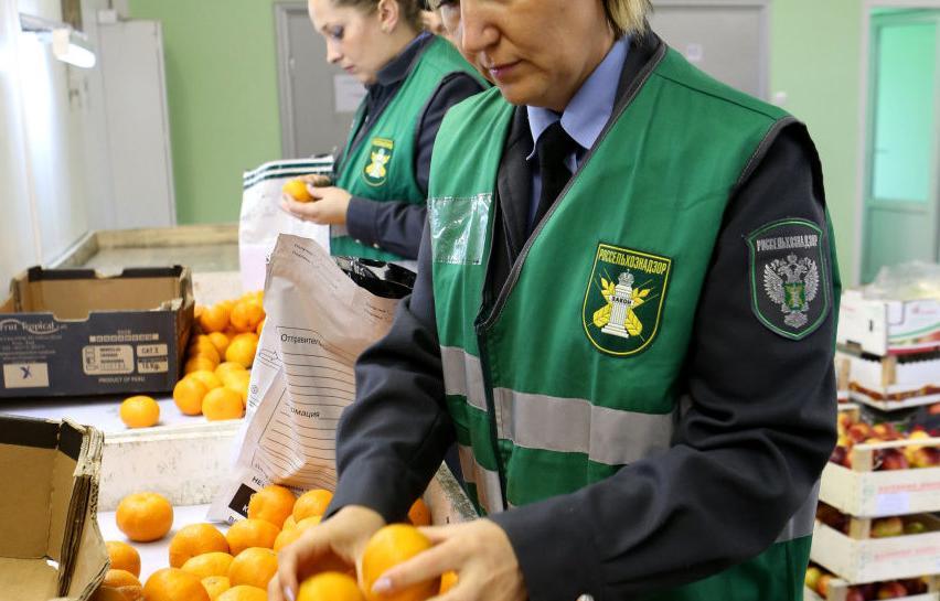В Тверской области за неделю досмотр прошли 340 тонн кофе и 200 тон чая - новости Афанасий