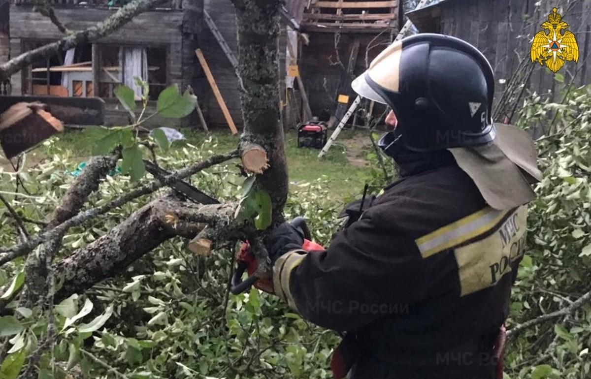 Губернатор Тверской области Игорь Руденя возглавил комиссию по ликвидации последствий стихии в Андреаполе