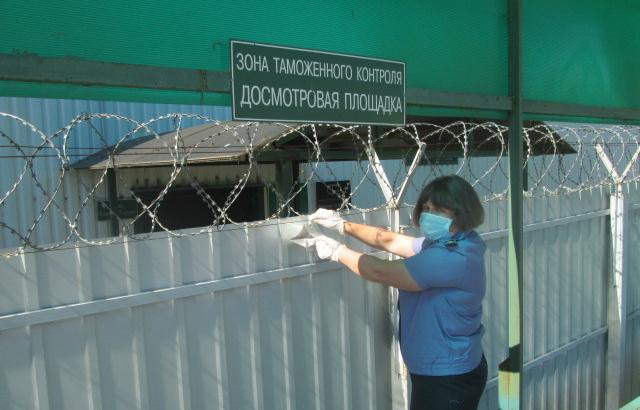 В Кимрах в помещениях «Терминала Савелово» установлены феромонные ловушки