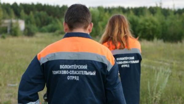 В Тверской области ищут мужчину, заблудившегося в лесу