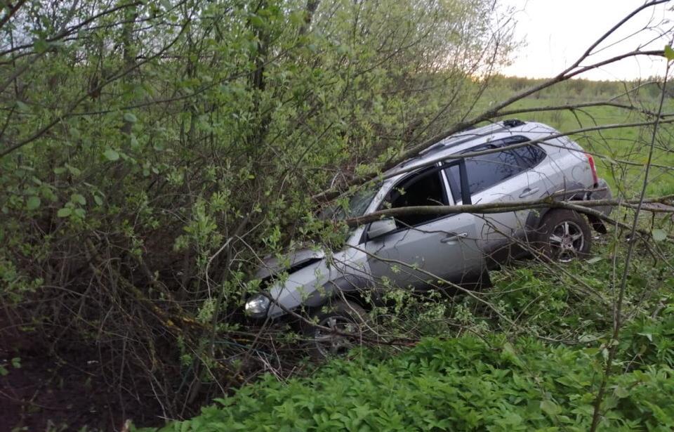 В Тверской области пьяный водитель съехал с дороги и врезался в дерево - новости Афанасий